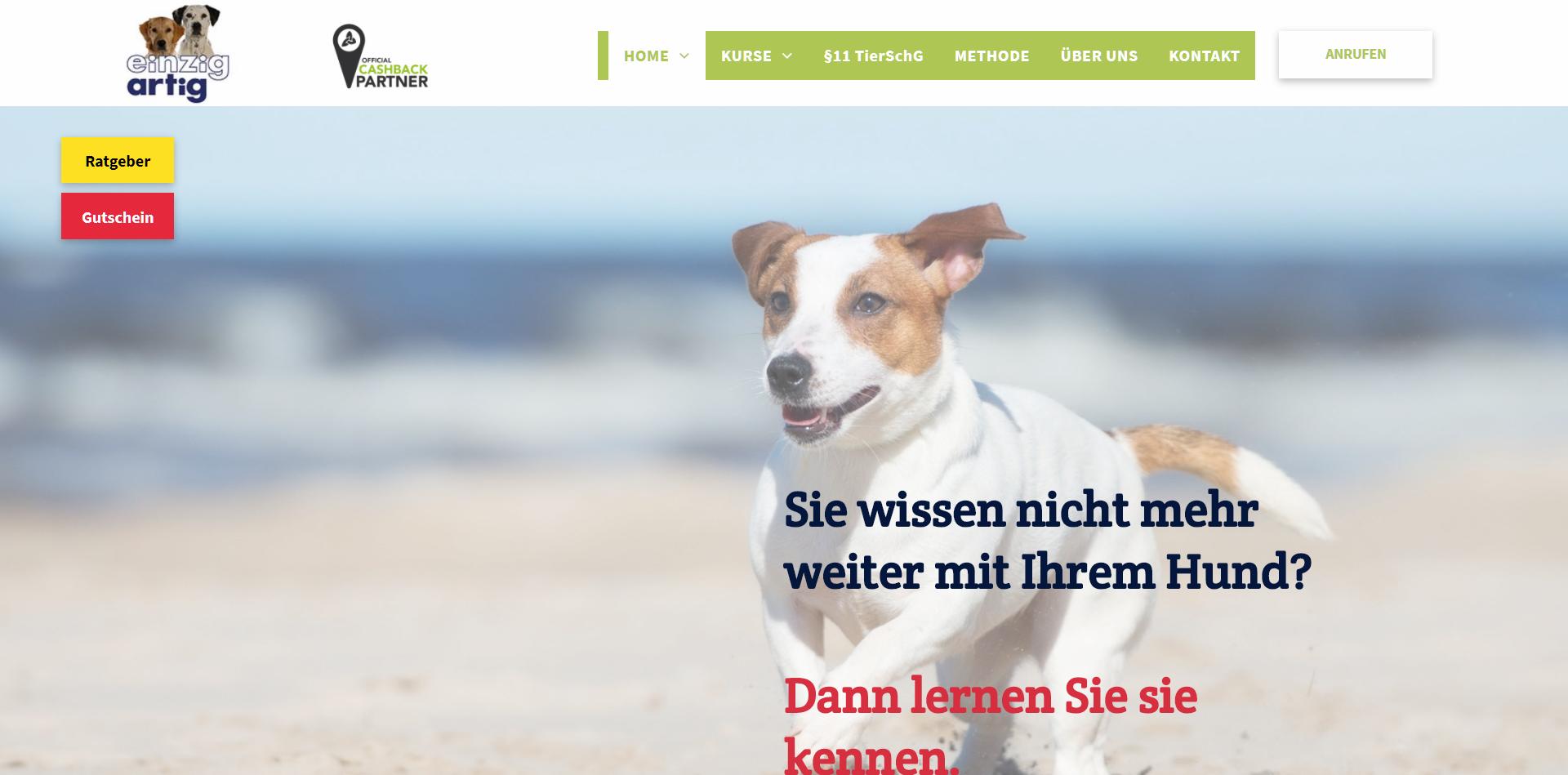 Hundeschule Einzigartig